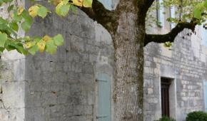 Verblijf in sfeervol oud landhuis